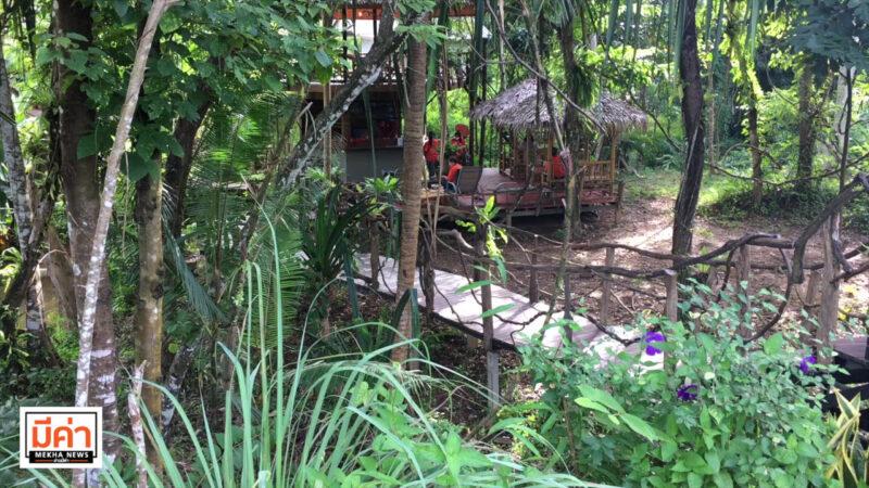 ชวนชิม ฮอกไกโดสายพันธุ์ไทยไส้ทะลัก